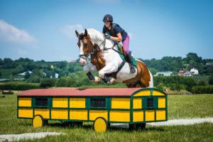 professional equestrian jump