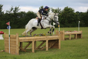quality equestrian jumps
